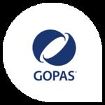 inter Partners_gopas